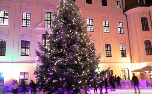 Ice Rink, Dresden, Germany, Courtesy of Carole Lehmann